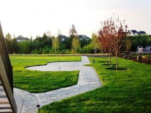 Complete Landscape on City Acreage