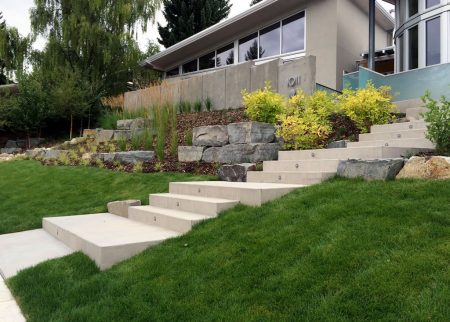 Contemporary Front Yard