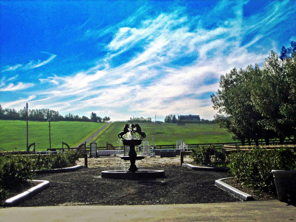 Entrance to Premiere Equestrian Ring with Custom Fountain