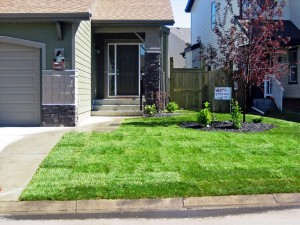 General Landscaping Calgary Front Yard