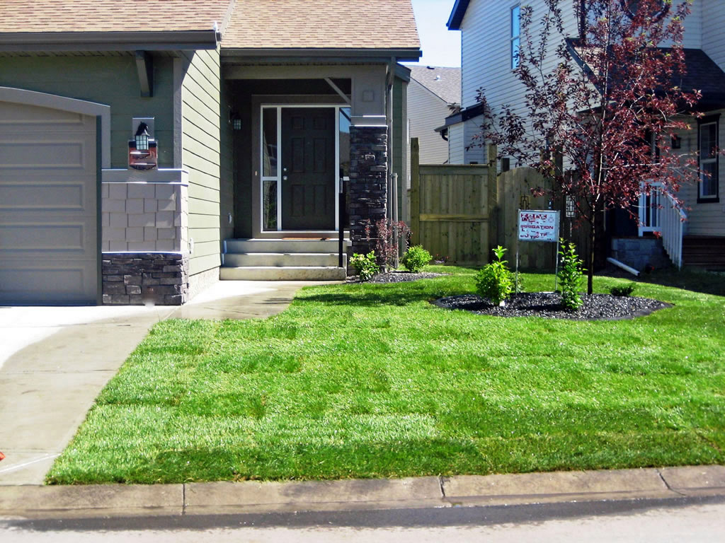Feel free landscaping ideas for front yard on a hill for Front lawn designs