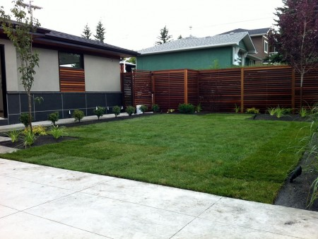 Inner city back yard with custom fencing