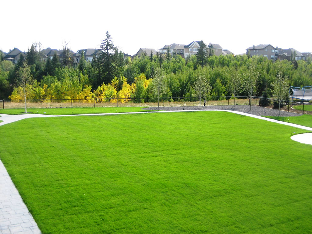 Large Premium Grass Area
