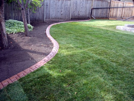 New Grass with Decorative Curbing