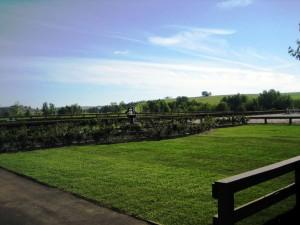 Sitting Area for Calgary's Premiere Equestrian Centre