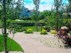 Acreage Backyard