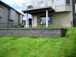 Basic Yard with Walling and Sod