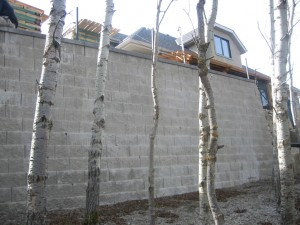 Large Engineered Wall